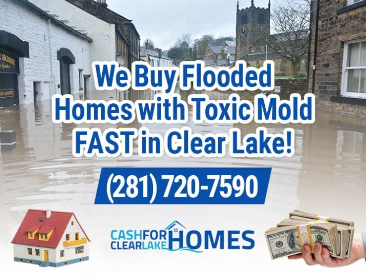 clear lake water damage and mold